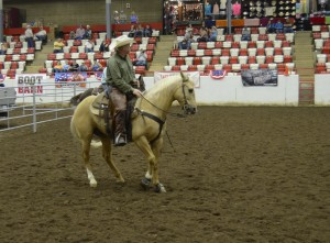 American Ranch Horse Assoc - World Show