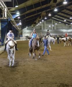 TN Paint Horse Assoc