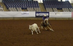 East Coast Reined Cow Horse Assoc