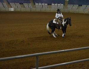 TN Stock Horse Assoc