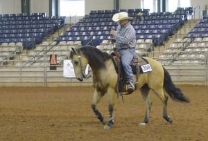 TN Volunteer Ranch Horse Assoc