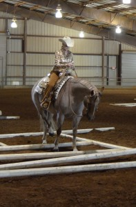 West TN Quarter Horse Assoc